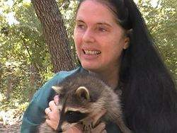 """... Rescue is, """"I have found an abandoned baby or injured wild animal"""